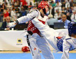 Taekwondo Masters Bonn  26.09.2015